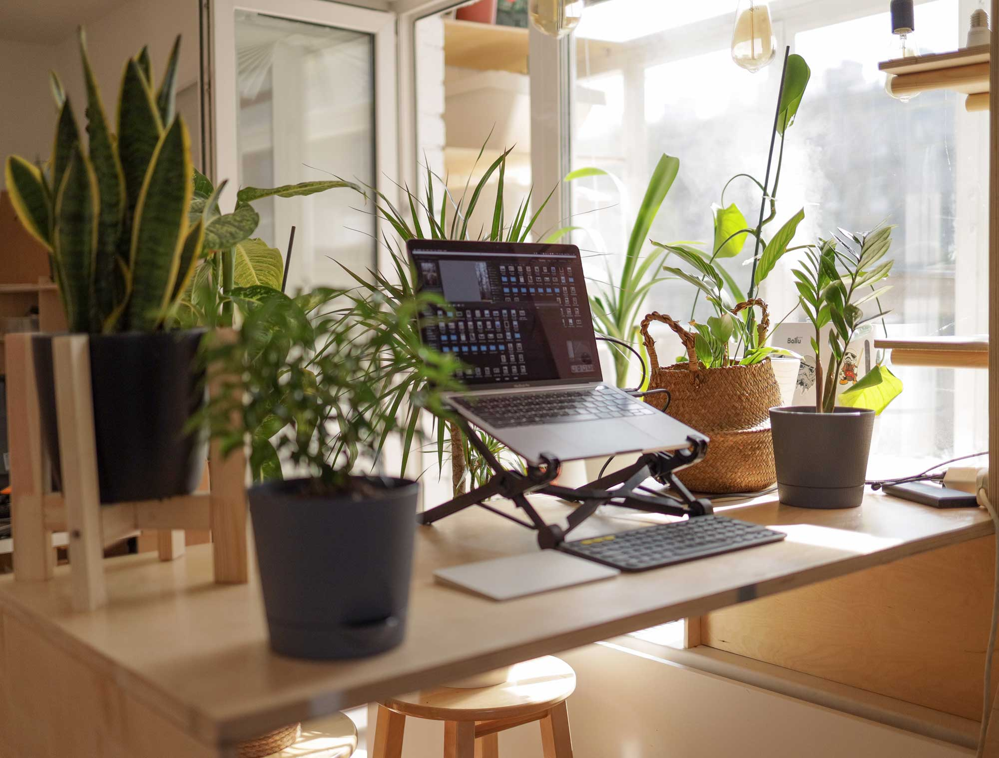 Ways To Create A More Productive Work From Home Environment
